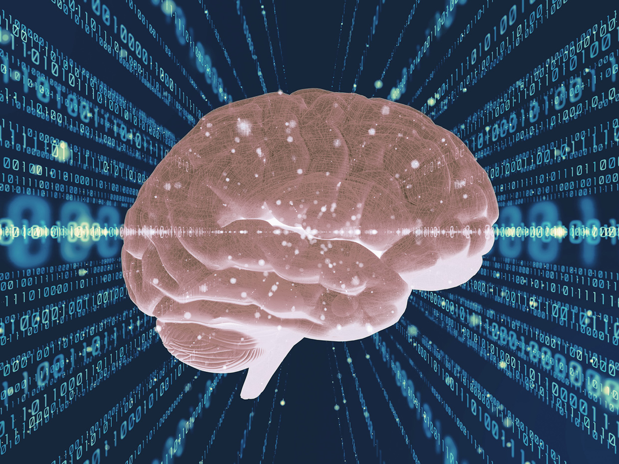 The Signal Detection Theory Can Be Used To Calculate Cognitive Fatigue Objectively
