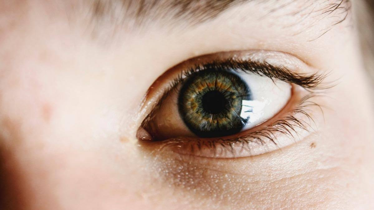Genetic Risk And Glaucoma Prevalence Studied